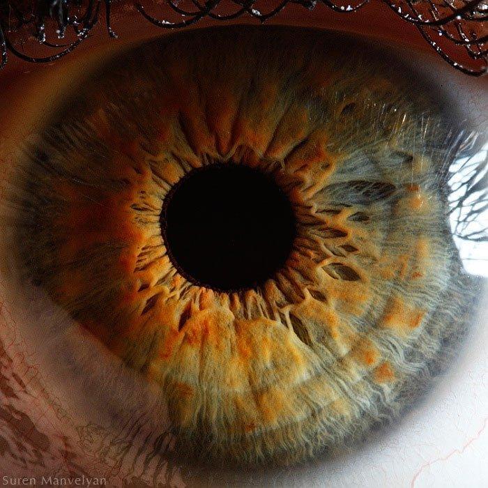 closes olho humano (16)