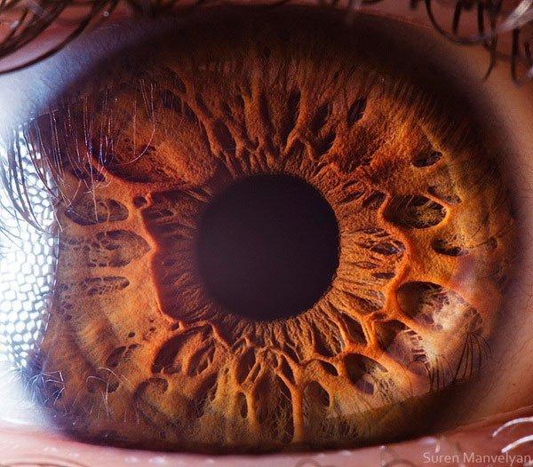 closes olho humano (2)