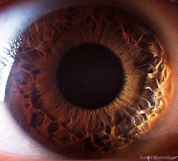 closes olho humano (21)
