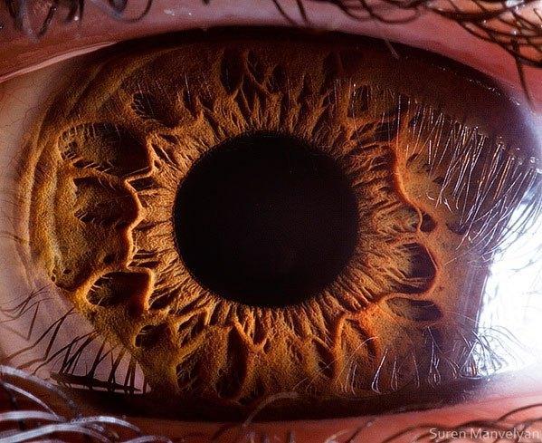 closes olho humano (3)