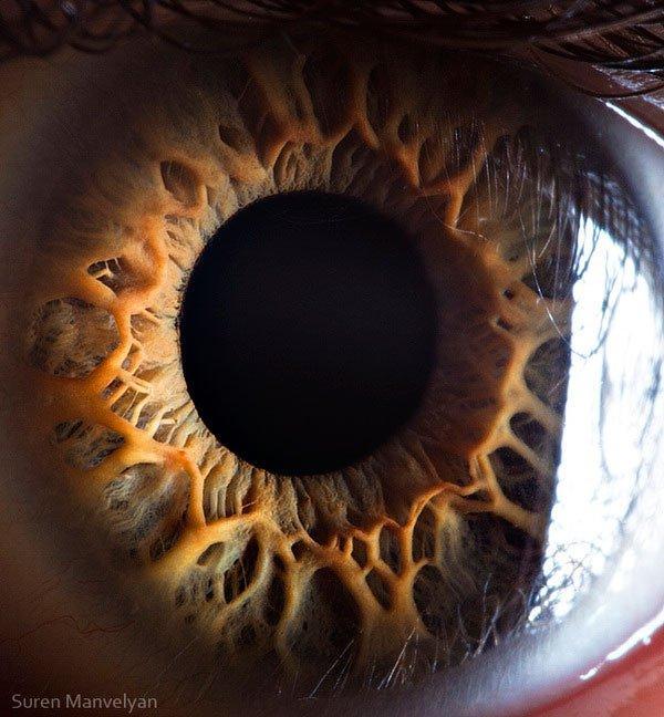 closes olho humano (4)