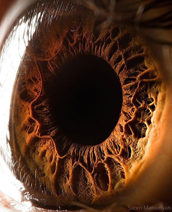 closes olho humano (6)