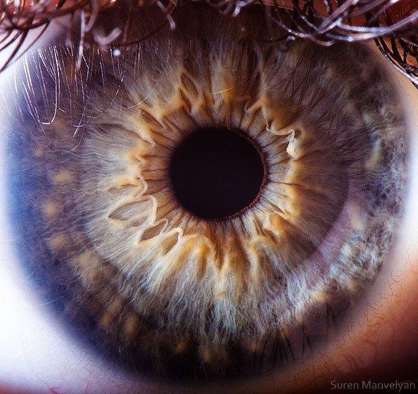 closes olho humano (7)