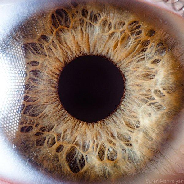 closes olho humano (8)