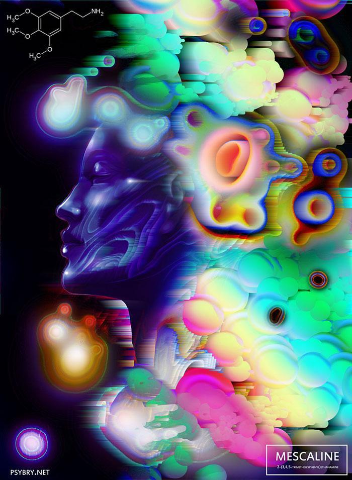 efeitos drogas arte 17