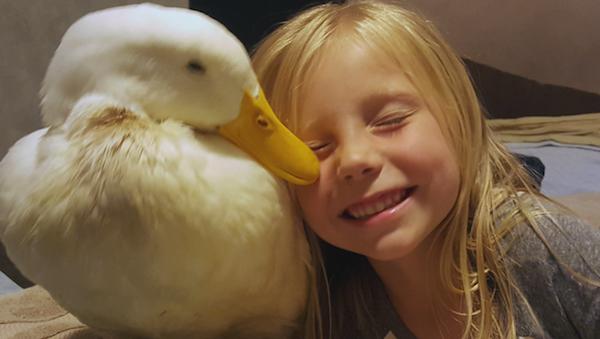 amizade entre animais e humanos 4