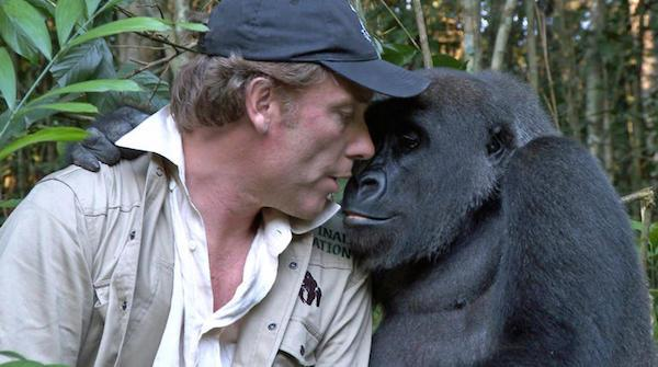 amizade humanos e animais 7