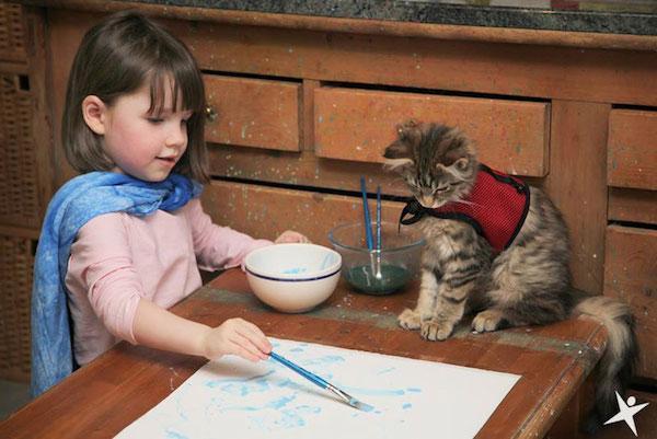 anizade animais e humanos 3