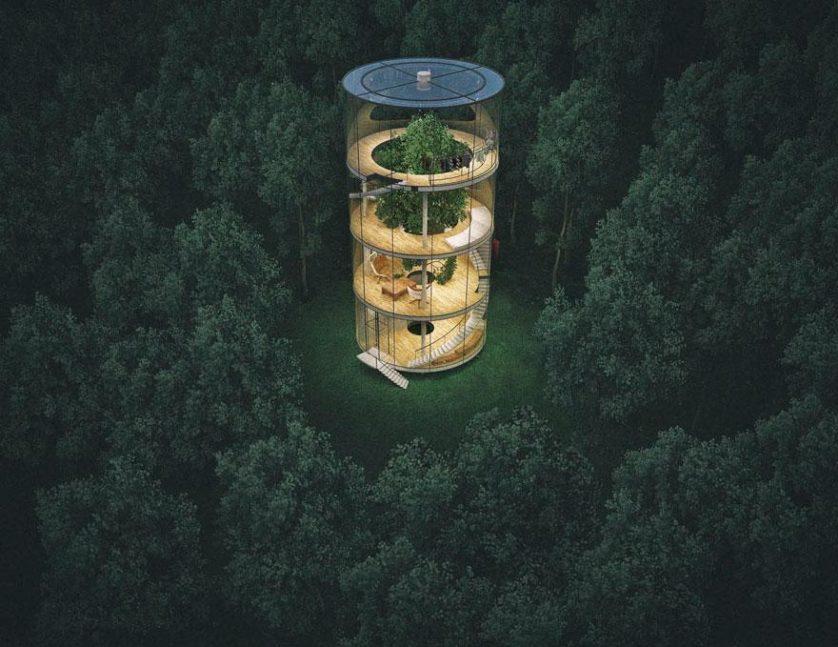 Impressionante casa tubular de vidro é projetada ao redor de árvore