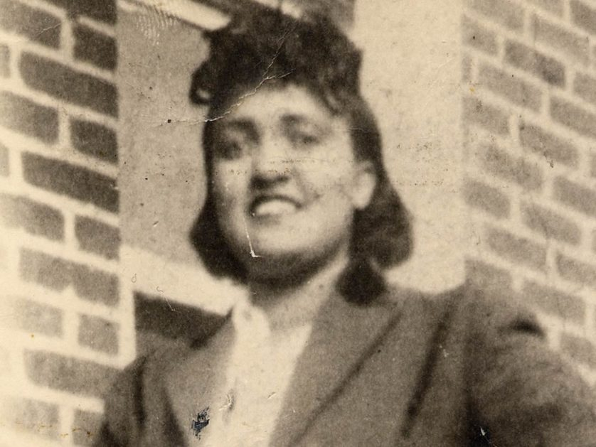 HeLa henrietta lacks 2