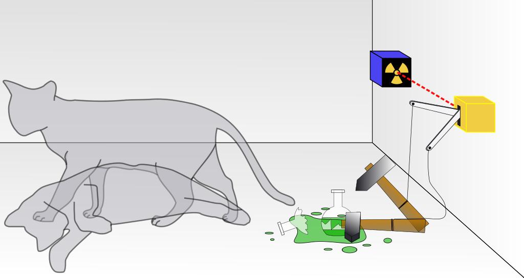 Schrodingers gato 2
