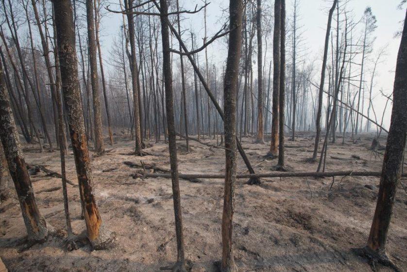 imagens-fantasmagoricas-feitas-depois-do-incendio-florestal-no-canada-6