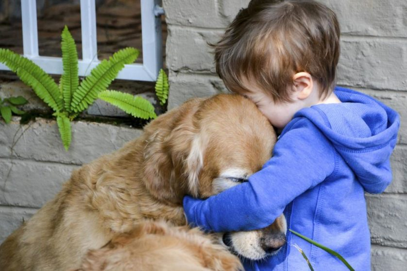 Little boy showing affection and love for his best friend, a cuddly golden retriever.