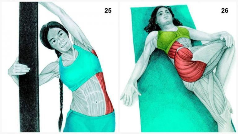 alongamento musculos 12