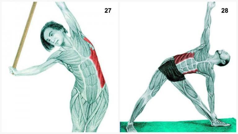 alongamento musculos 13