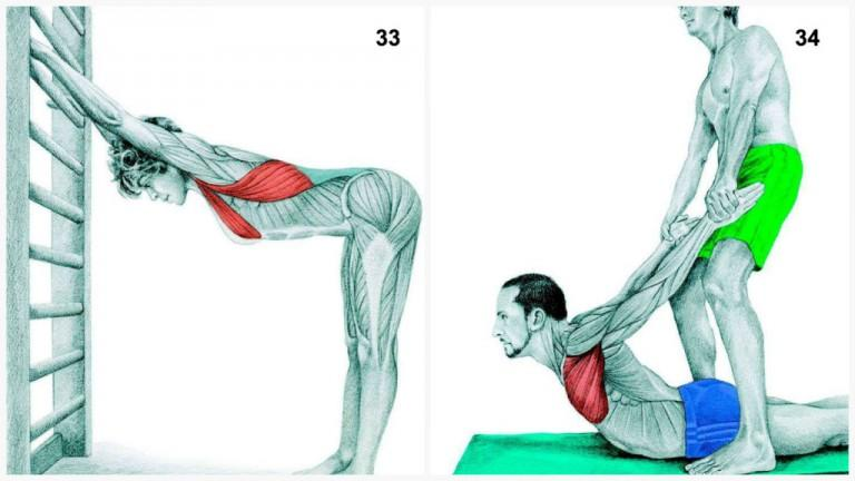 alongamento musculos 16