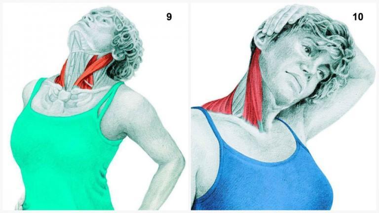 alongamento musculos 4-