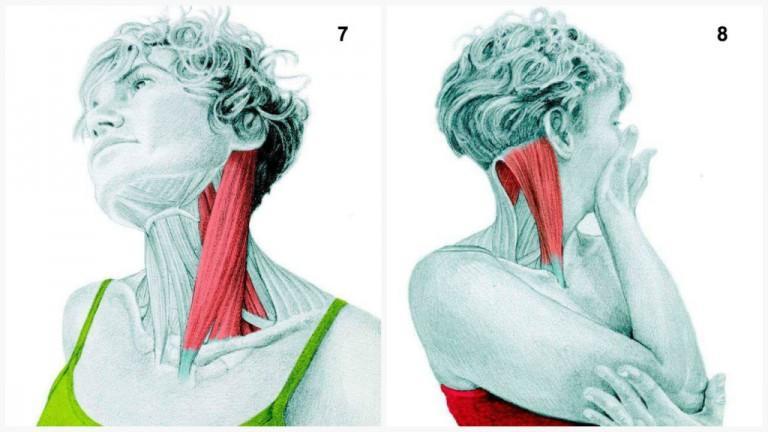 alongamento musculos 4