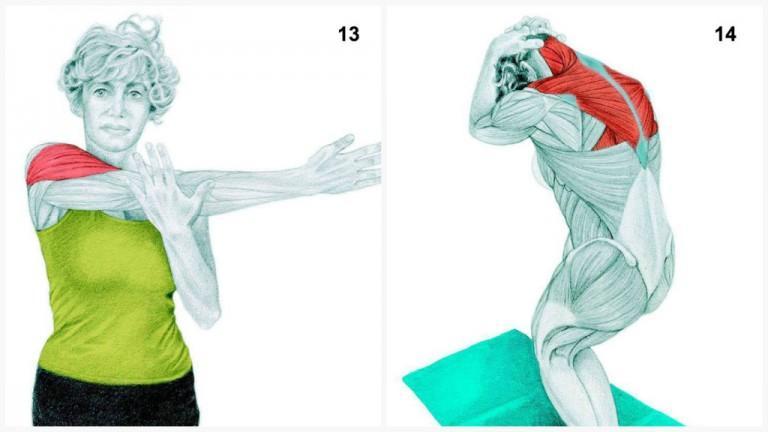 alongamento musculos 6