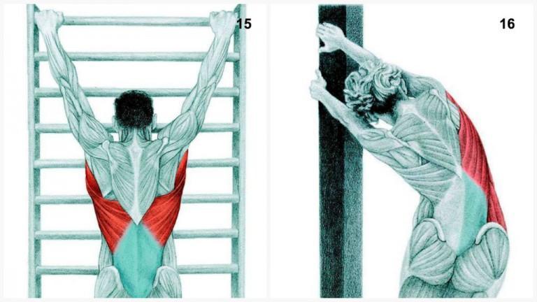 alongamento musculos 7