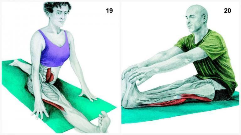 alongamento musculos 9