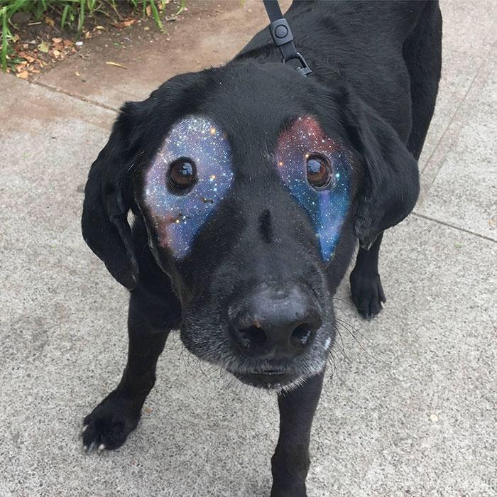 cao vitiligo 7