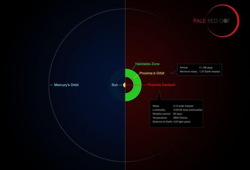 Comparação do sistema solar (até a órbita de Mercúrio) e Proxima Centauri, mostrando a zona habitável e a provável órbita de Proxmia b