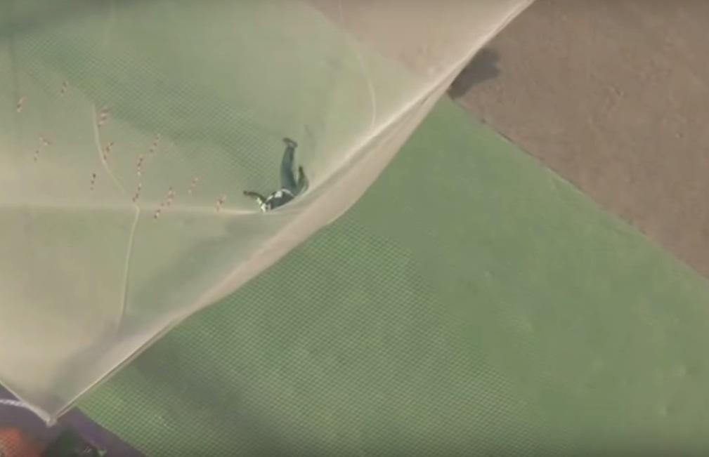 homem pula sem paraquedas em rede 3