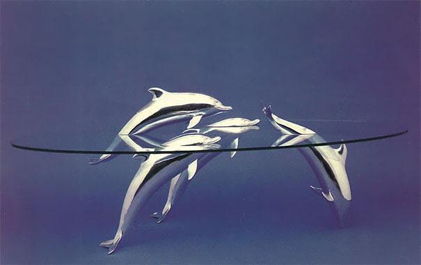 mesas animais flutuando - pearce (8)