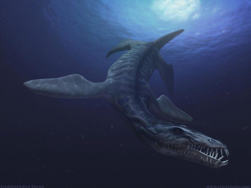animais-predadores-dinossauros-1