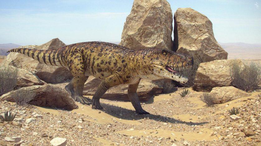 animais-predadores-dinossauros-2
