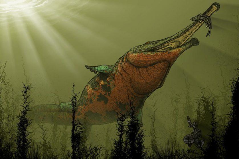 animais-predadores-dinossauros-3