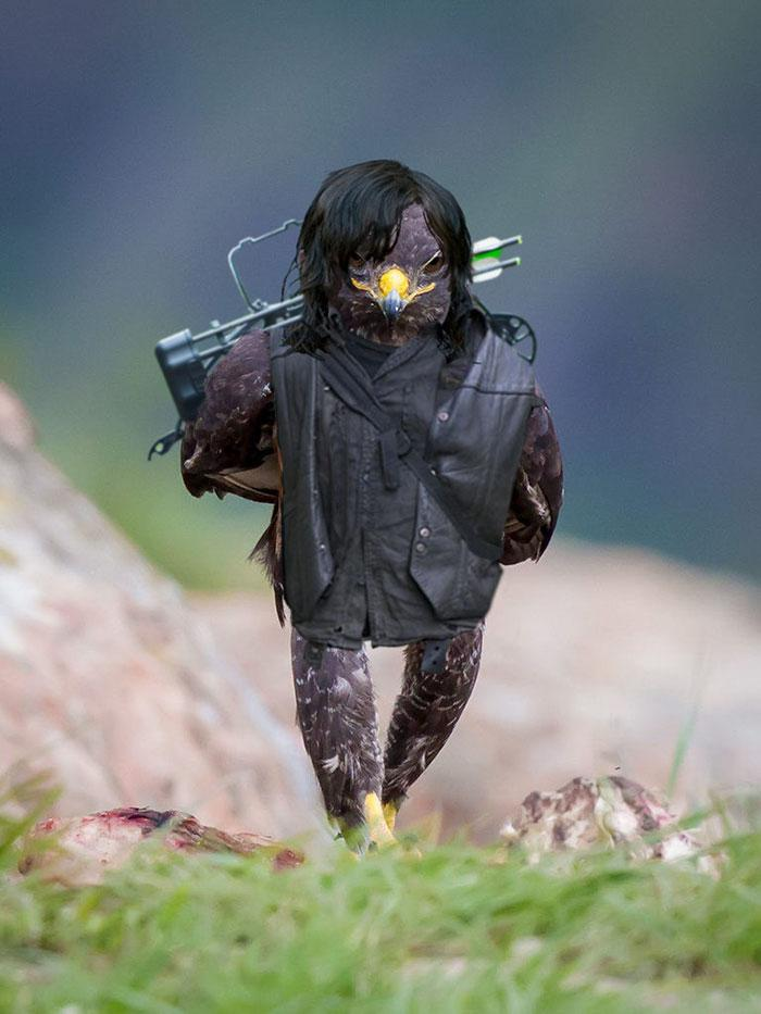 aguia-photoshop-9