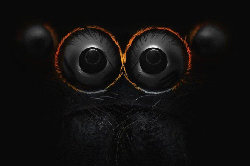 foto-microscopica-olho-aranha