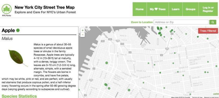 mapa-interativo-arvores-nova-york