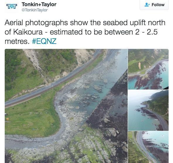 terremoto-nova-zelandia