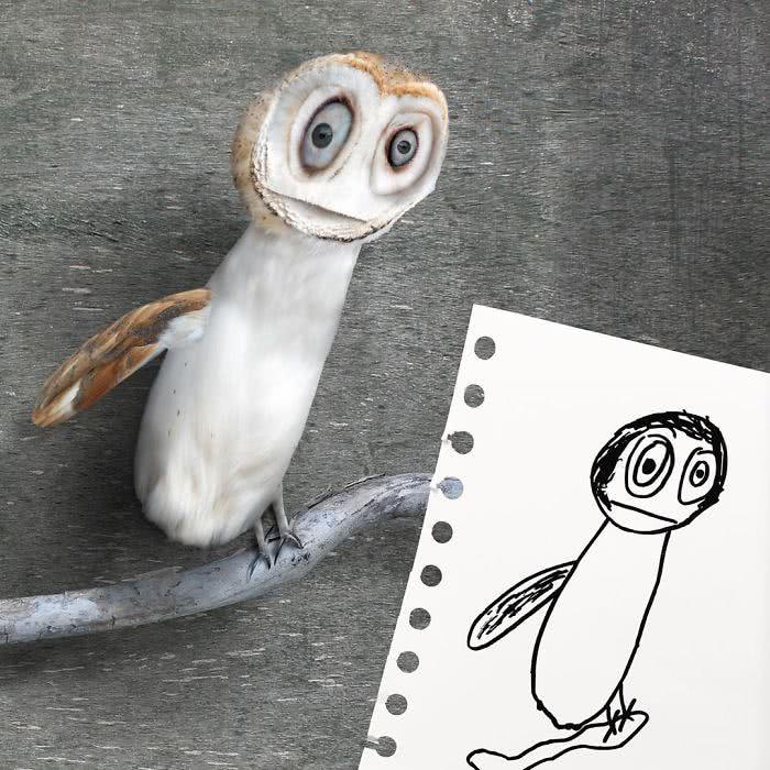 Coruja desenhada por uma criança e transformado em realidade por photoshop