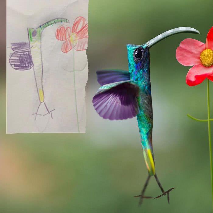 Beija-flor desenhado por uma criança e transformado em realidade por photoshop