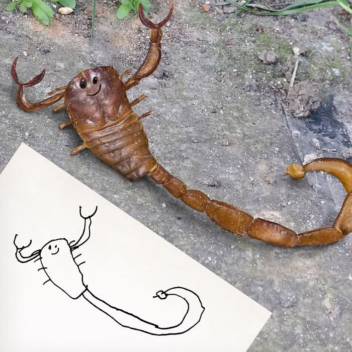 Escorpião desenhado por uma criança e transformado em realidade por photoshop