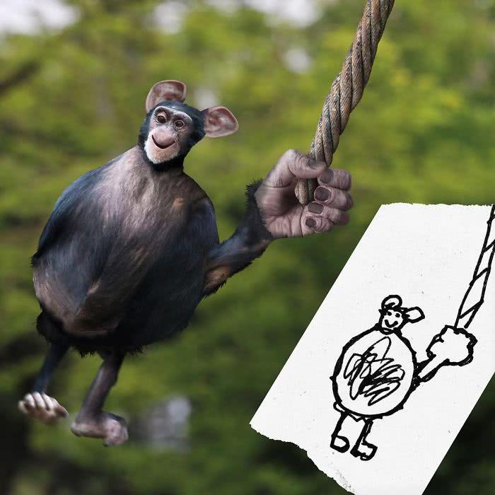 Chimpanzé desenhado por uma criança e transformado em realidade por photoshop