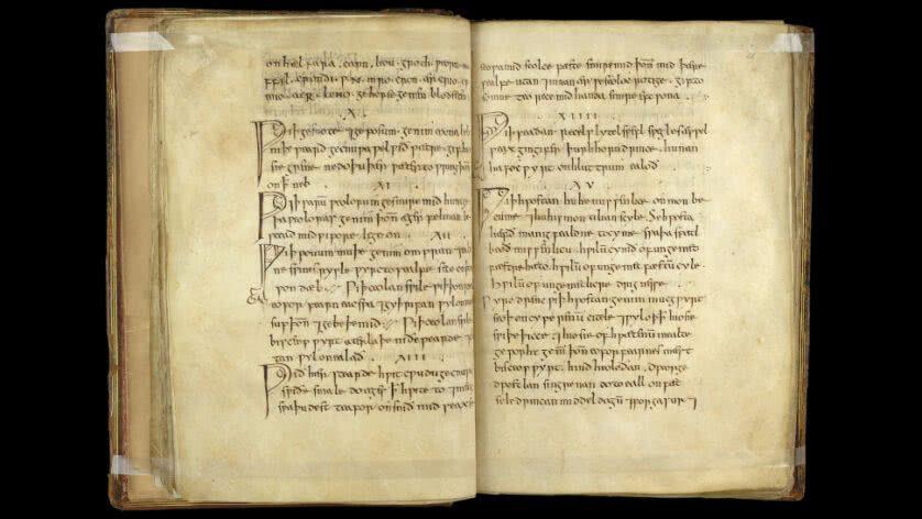 livro medico anglo saxao antigo