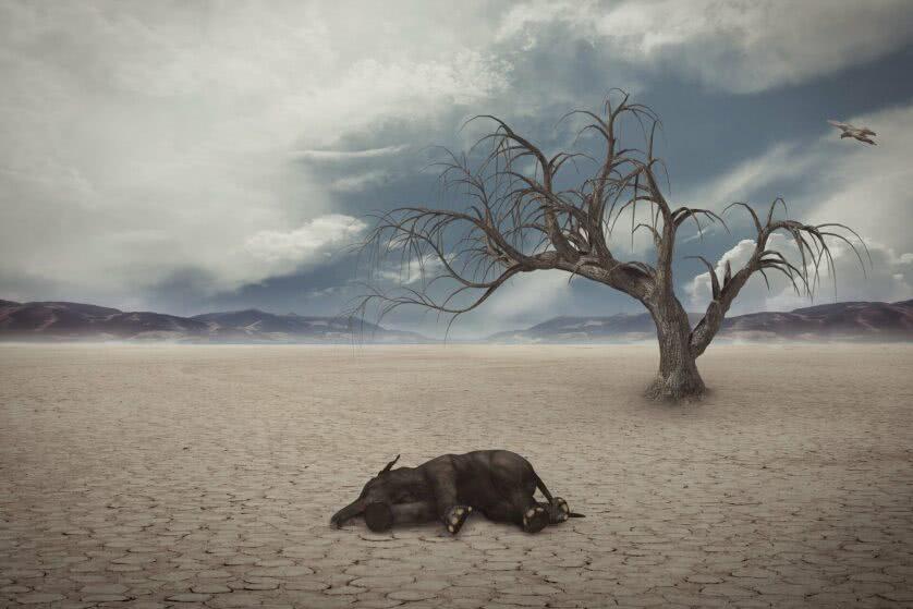 Identificada a causa da maior extinção em massa na história da Terra